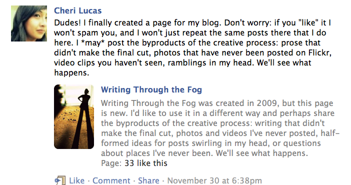 On Facebook Status Updates And What I Could Have Said Cheri