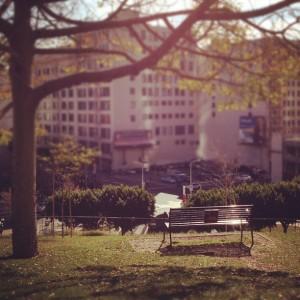 500 Days bench
