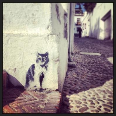 Albayzin Kitty