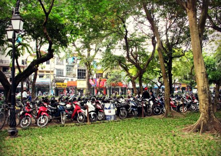 Motorbikes at the Park