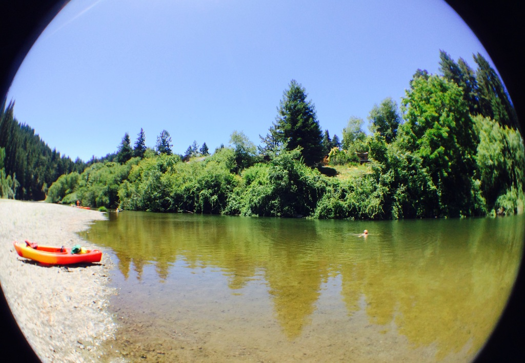 Kayaking and swimming on the Russian River on the Fourth of July. Somewhere between Guerneville and Monte Rio.