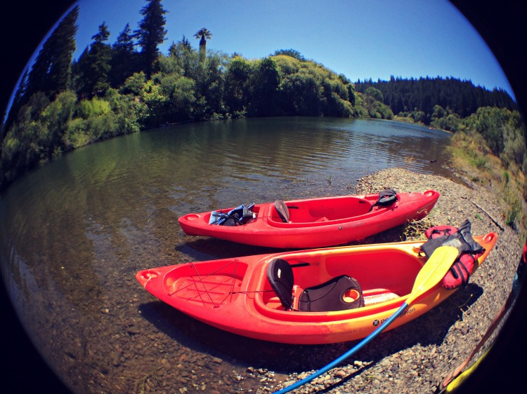 Our kayaks on the shore of the Russian River.