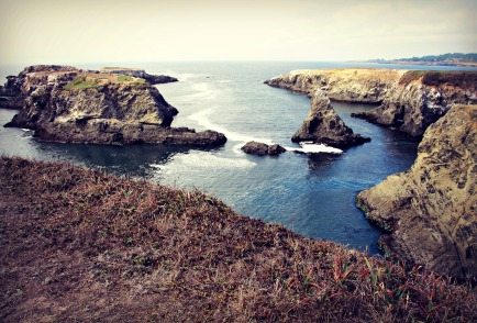 Along the coast in the Mendocino Headlands.