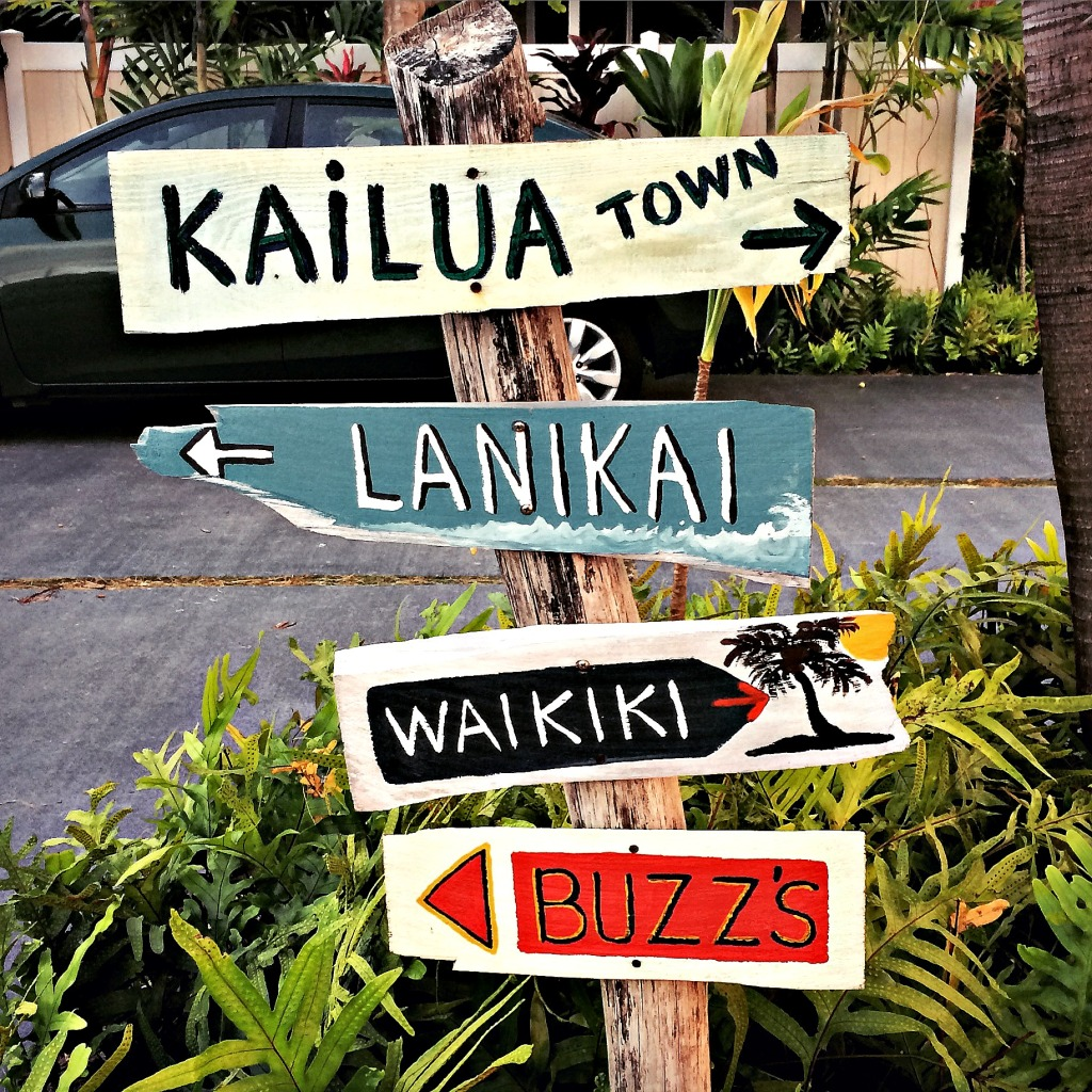 A cluster of signs, taken along Kailua Road.