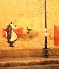 Sad Panda, Gezira, Cairo
