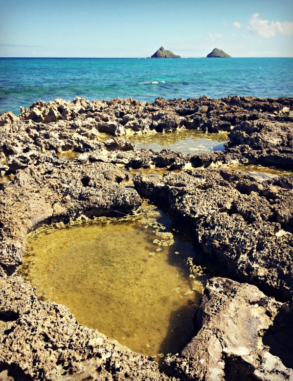 Flat Island in Kailua, Oahu