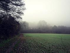 Misty Trottiscliffe
