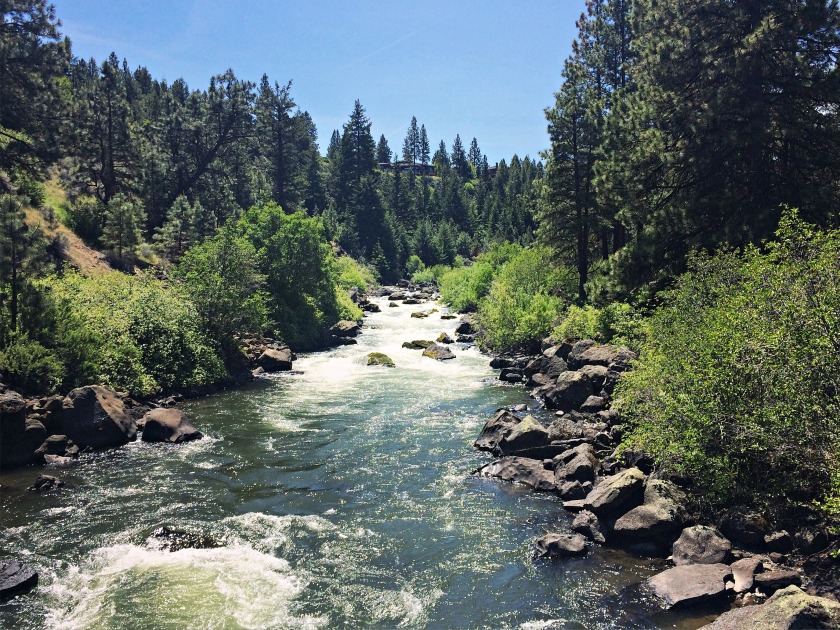 View of the Deschutes from the footbridge, about 1.5 miles upstream.