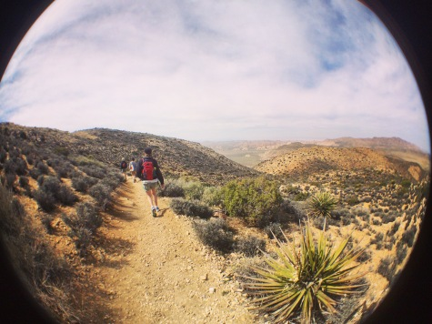 Hiking, Joshua Tree National Park.