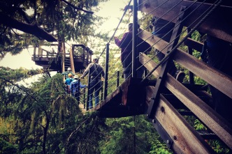Suspension bridge, Whistler, British Columbia.