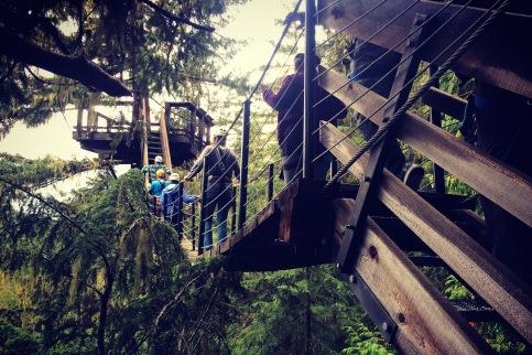 Suspension bridge, Whistler, British Columbia.