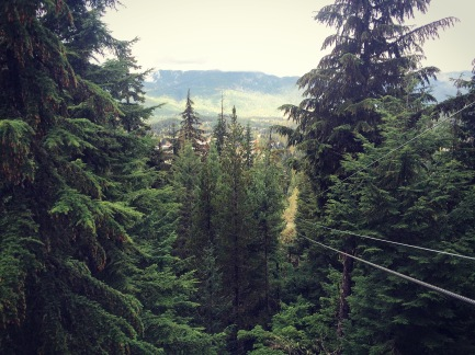 View from Whistler and Blackcomb Mountains, Whistler, British Columbia.