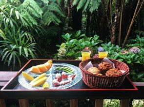 Pre-volcano breakfast at Lotus Garden Cottages.
