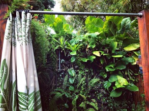 The leafy interior of one of the outdoor showers.