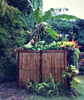 Outdoor shower at Ka'awa Loa Plantation, a few steps from the hot tub.