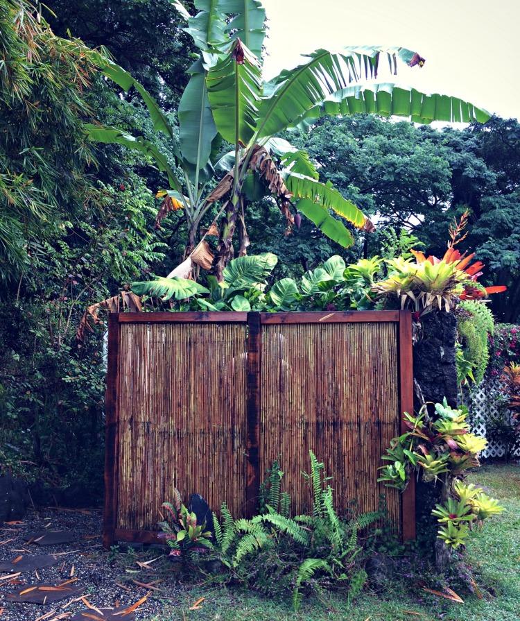 Outdoor shower at Ka'awa Loa Plantation, a few steps from the hot tub.