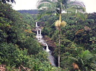 After our time in Volcanoes National Park, we drove through Hilo to Umauna Falls, where we ziplined over falls and swimming holes.