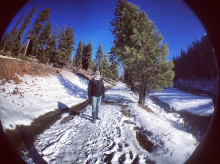 Along the Truckee River