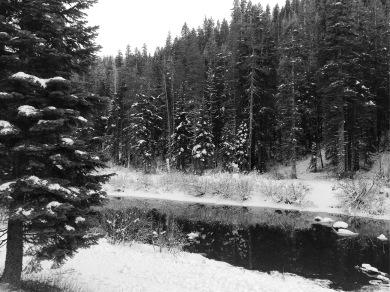 Winter in Tahoe City