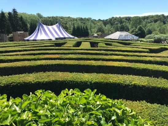 Maze, Leeds Castle, Kent