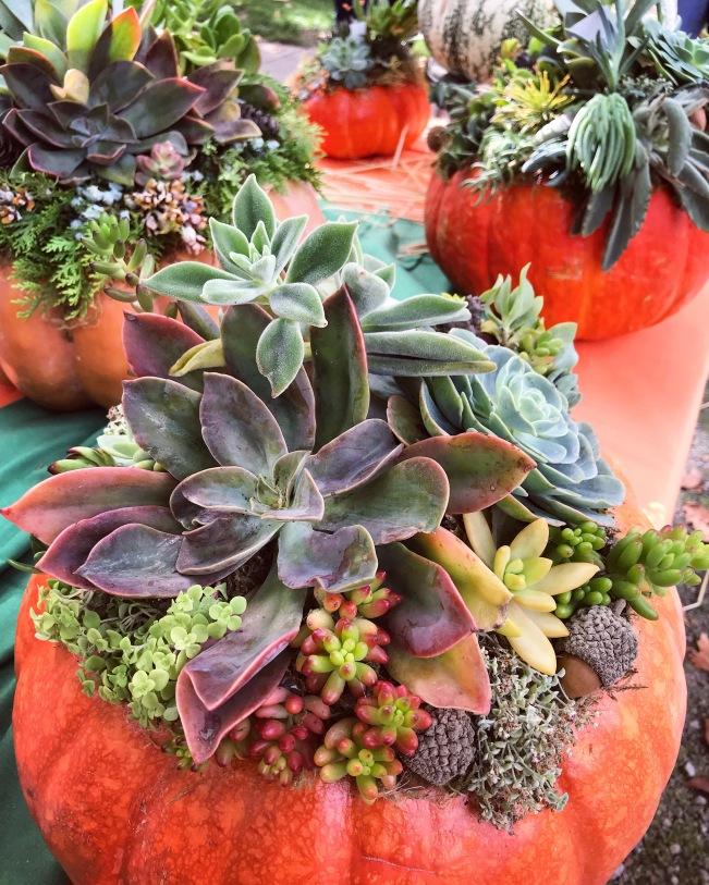 Windsor Halloween Farmers' Market,